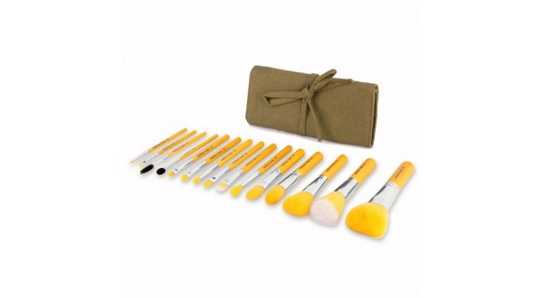 Complete 15pc. Brush Set