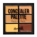 Concealer Palette Medium-Dark